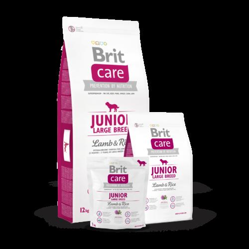 BRIT Care Kutyatáp - Junior Large Breed Lamb & Rice 12kg